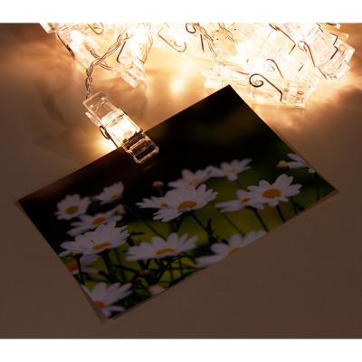 LED-Lichterkette McShine mit 50 Clips, warmweiß,...